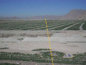 خط انتقال گاز جویم بنارویه کامفیروز